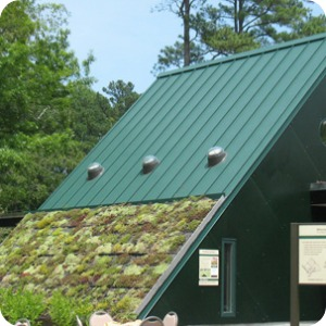 Living Green in the Watershed Exhibit
