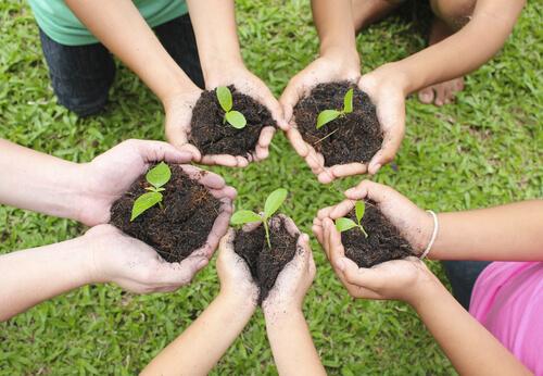 community-gardening